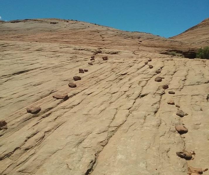 The Vetducator - Rock lines path symbolizing internship path.