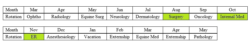 The Vetducator - Picture of senior vet year schedule for internship prep