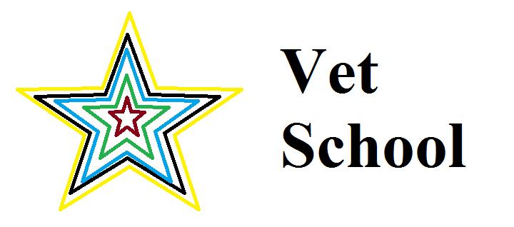 The Vetducator Star Symbol
