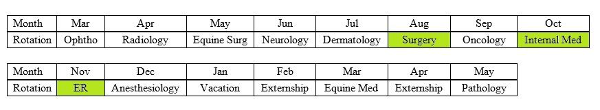 The Vetducator - Picture of senior vet year schedule for internship prep