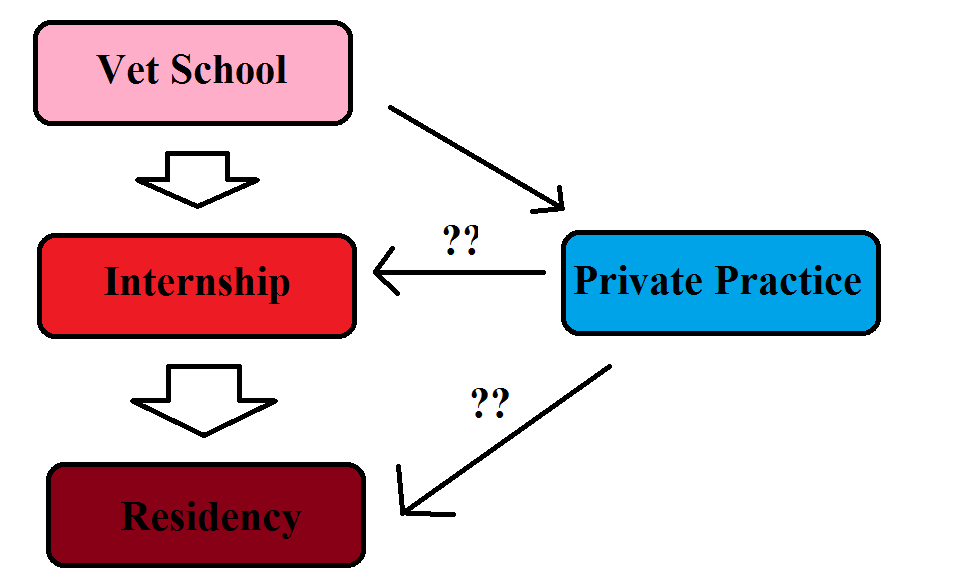 The Vetducator - Image of vet career progression with option private practice step.
